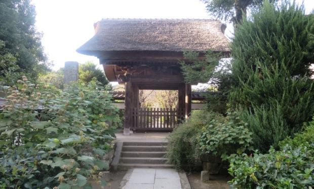 08.03 鎌倉-海街-極楽寺 a (1)