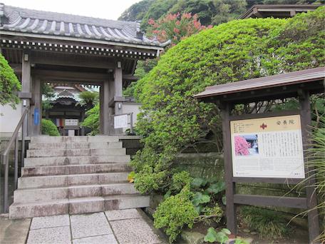 08.24 鎌倉-安養院-黑澤明 1